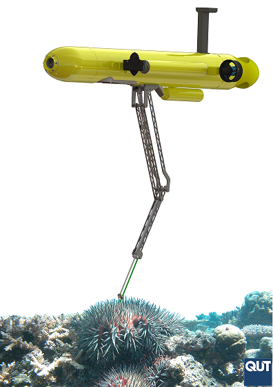 COTSBot CrownThornsStarfish Detectionsystem