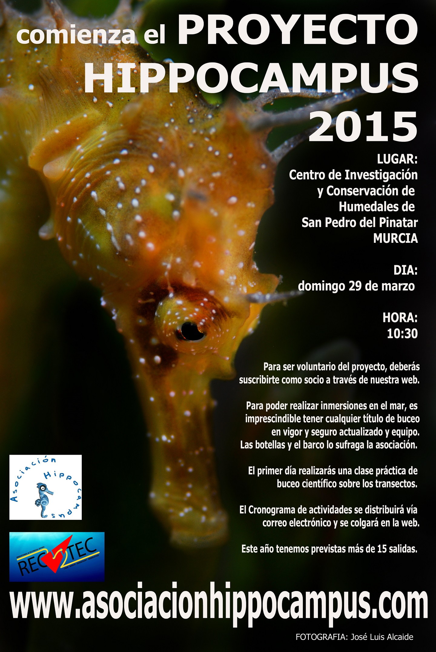 Programa Voluntariado Hippocampus