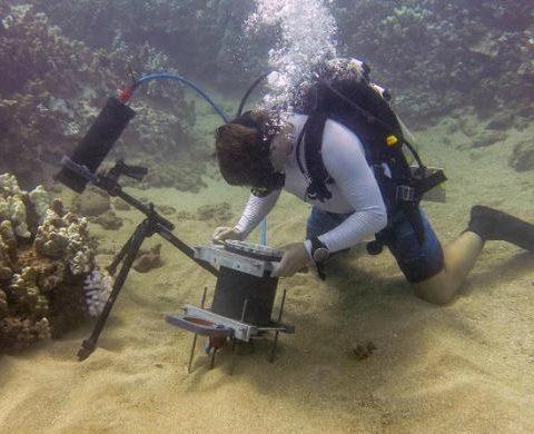 Benthia, un nuevo microscopio submarino.